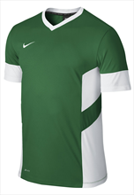 Nike Trainingsshirt SS Academy 14 Training Top grün/weiß