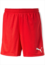 Puma Pitch Shorts- red