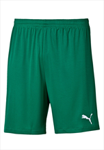 Puma short Velize groen/wit