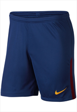 Nike FC Barcelona thuis short 2017/18 blauw/rood