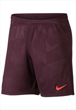 Nike FC Barcelona Champions League Short 2017/18 dunkelrot/orange