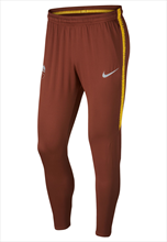 Nike AS Roma Trainingshose Squad Pant rotbraun/gelb