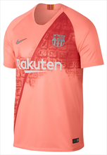 Nike FC Barcelona heren Champions League shirt 2018/19 roze/zilver