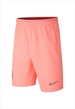 Nike FC Barcelona Kinder Champions League Short 2018/19 pink/silber