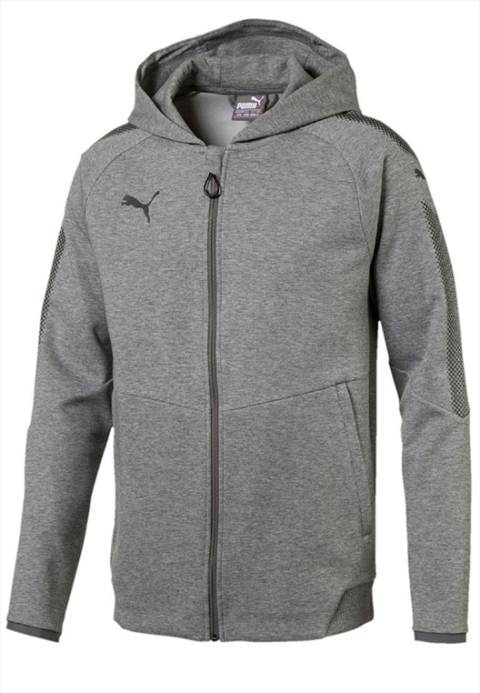 Puma Hoody Ascension Casuals grau/schwarz