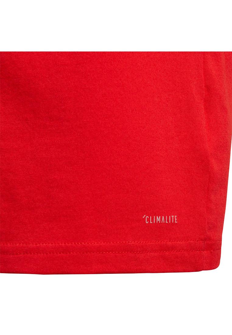adidas FC Bayern München Kinder Shirt Tee rot/dunkelgrau