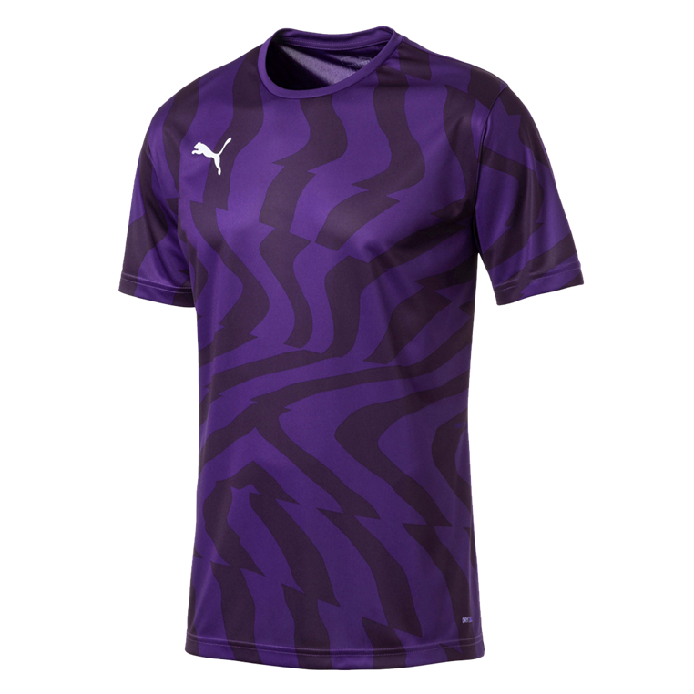 Puma Trikot Cup Core Jersey dunkelviolett/violett
