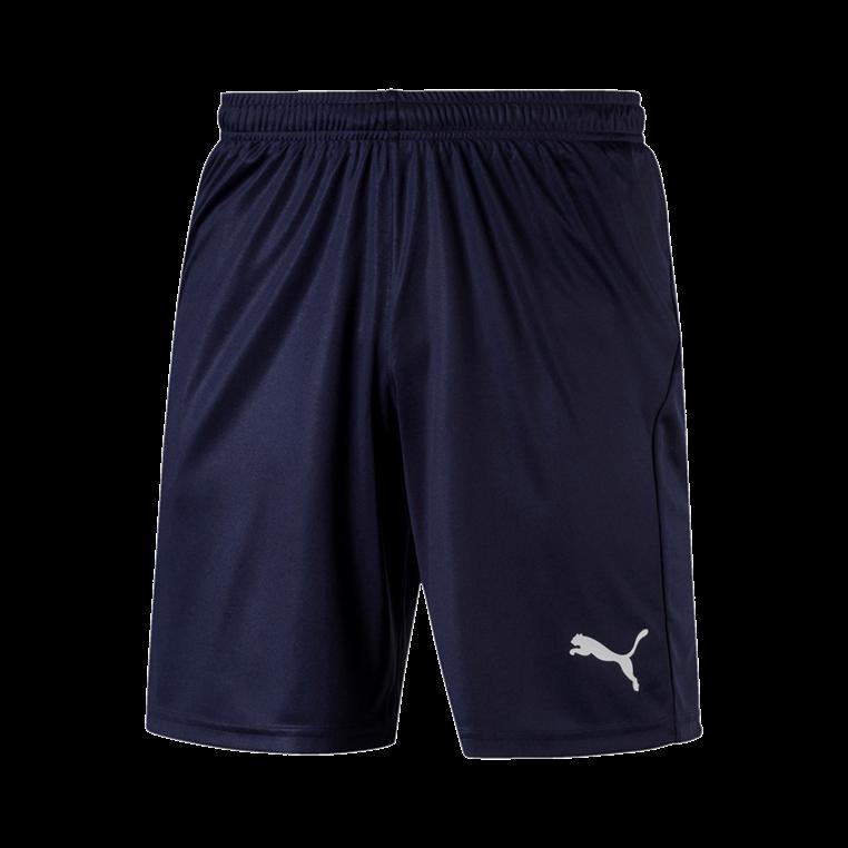 Puma Short Liga Core dunkelblau/weiß